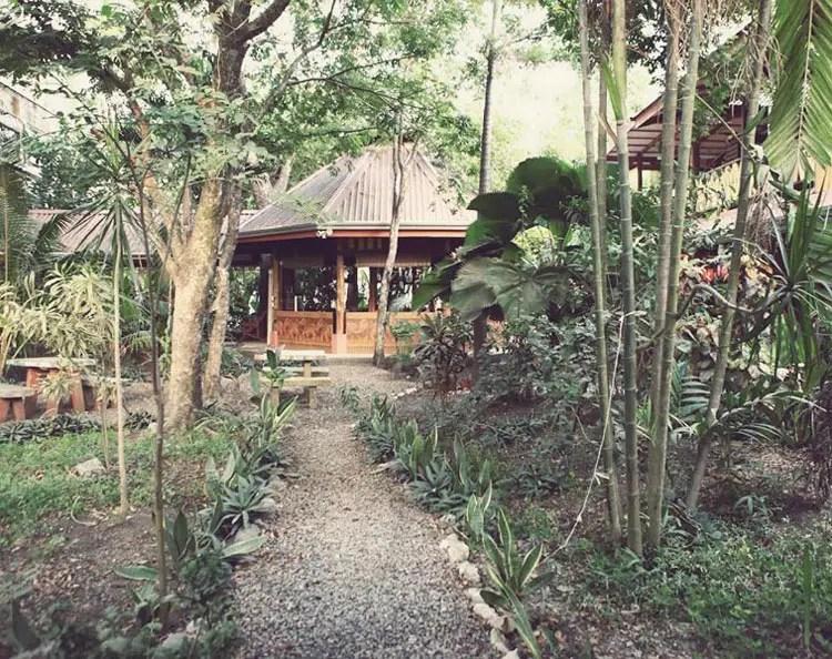 5 Star Hostel in Santa Teresa  Casa Zen Guesthouse