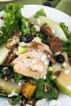 top view of a green salad with slices of chicken, blueberries and pears