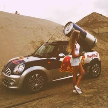 Red Bull samplinggirl