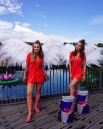 Red Bull samplinggirls Tomorrowland