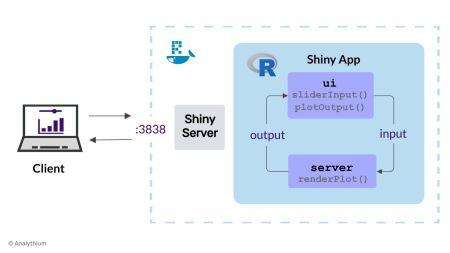 Running Shiny Server in Docker