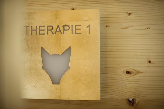 SH_wellness_therapie_zeichen