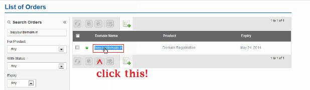 Renew or Delete Domain Names in BigRock 3