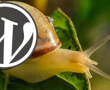 How to Solve Slow WordPress Website on Bluehost