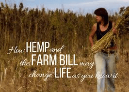 How Hemp Can Revive The Manufacturing Industry Of the US And Decrease Its Dependency On China 7