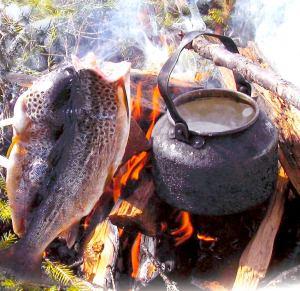 Nyfångad öring & kokkaffe i Hotagsbygden. Foto Hotagenkortet