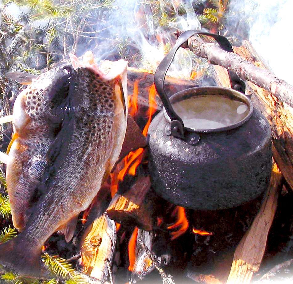 Nyfångad öring & kokkaffe. Foto Hotagenkortet