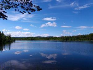 Vackra vyer i Hotagsbygden. Foto Patrik Bergdahl