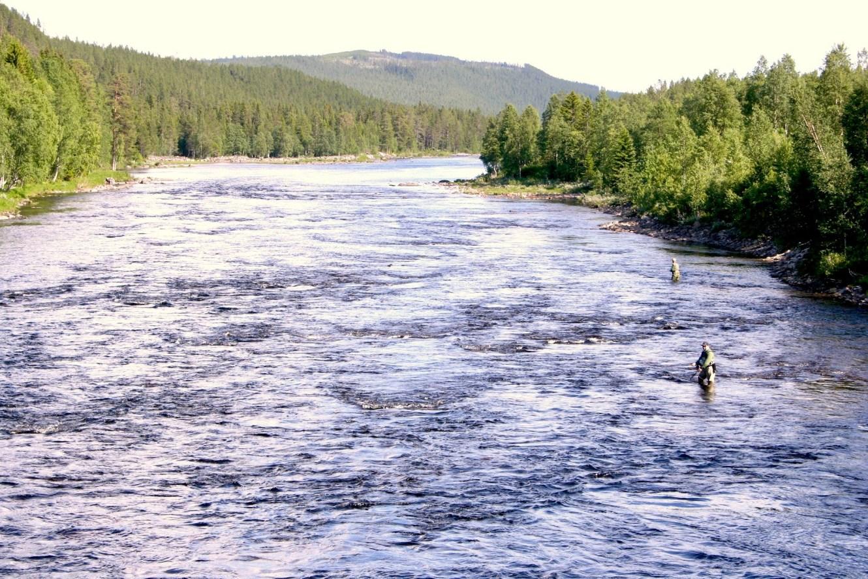 Fiske i Toskströmmen. Foto Roger W