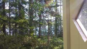 Stuga Stillheten utsikt från utedass Foto Stilla Dagar
