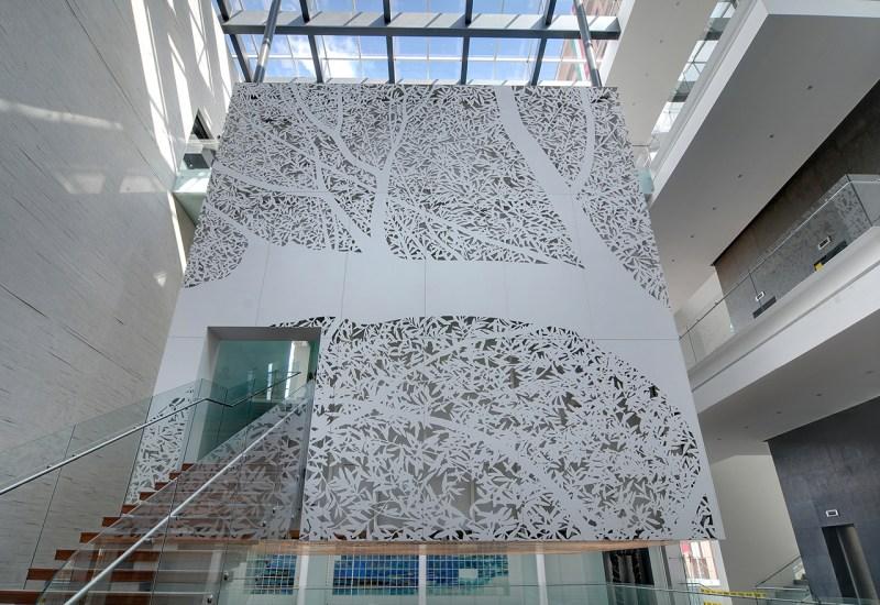 Los sueños que construyeron un museo - galeria072