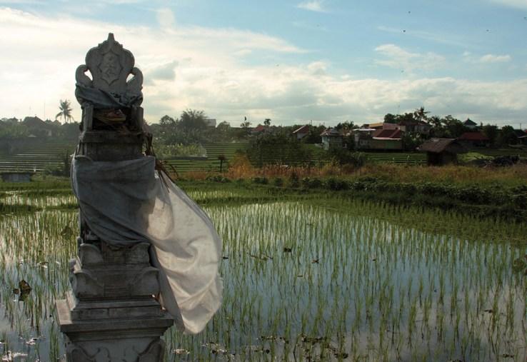 Bali - galeria0114-1024x704