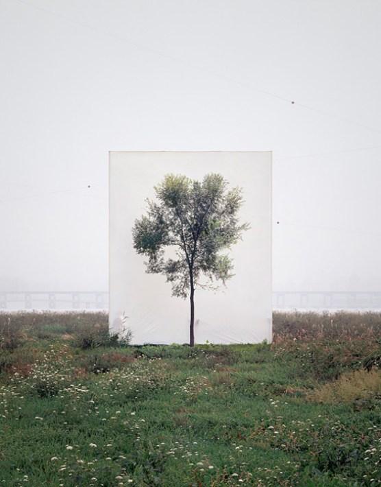 MYOUNG HO LEE - my_galeria03