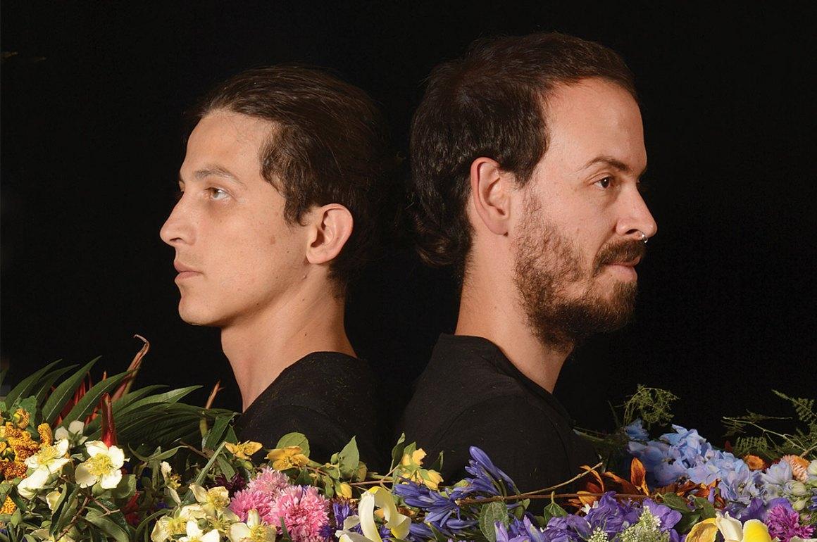 Flores Cosmos - PORTADA