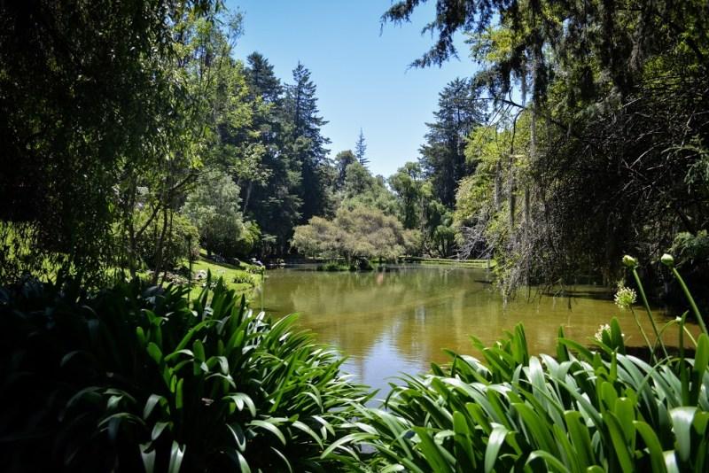 Agua Sta. María: tradición, compromiso y responsabilidad - manantial_10