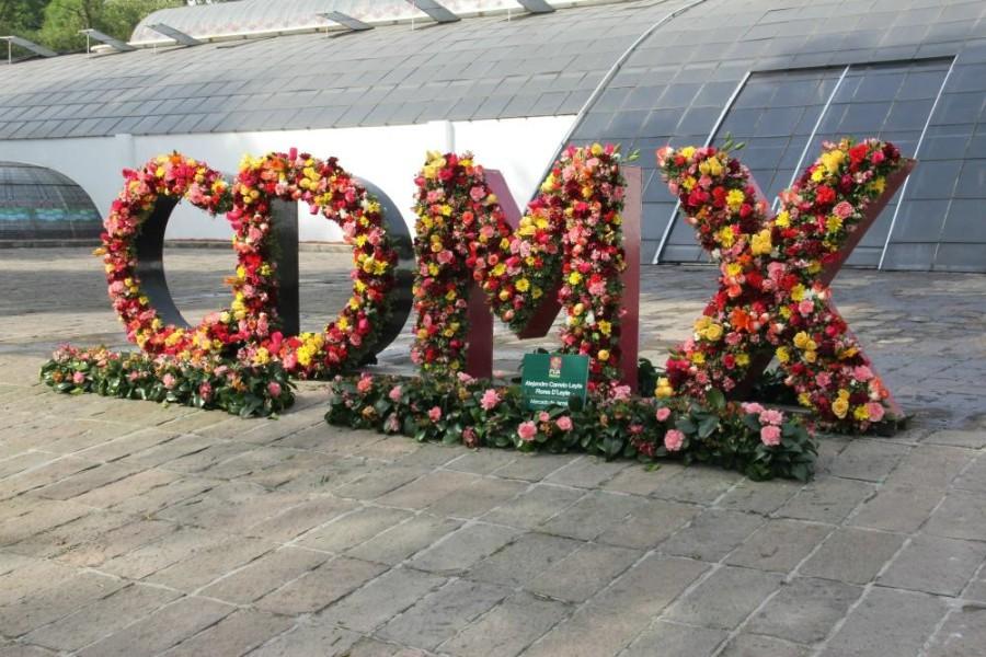 Festival Flores y Jardines FYJA 2017 - festivalfloresyjardines11