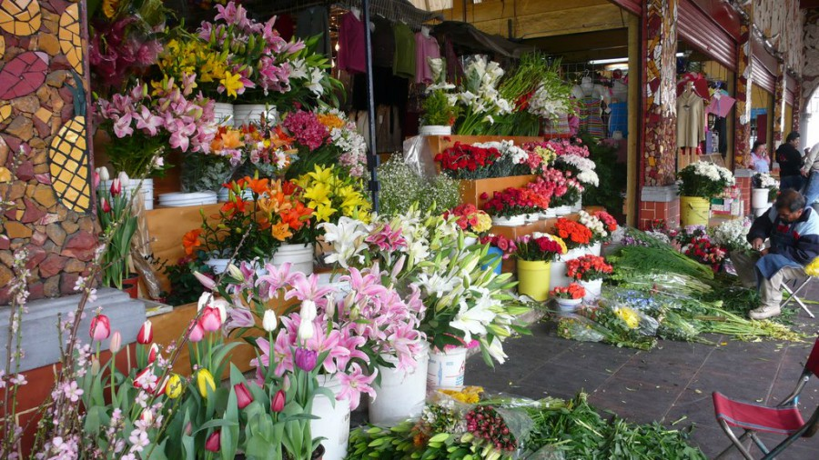 6 florerías para tener en la mira - 1mercadodefloresdesanangel