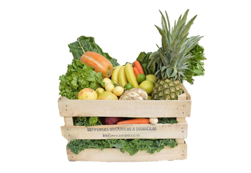 Las mejores tiendas de productos orgánicos online - tienda-productos-organicos-el-buen-campo-final