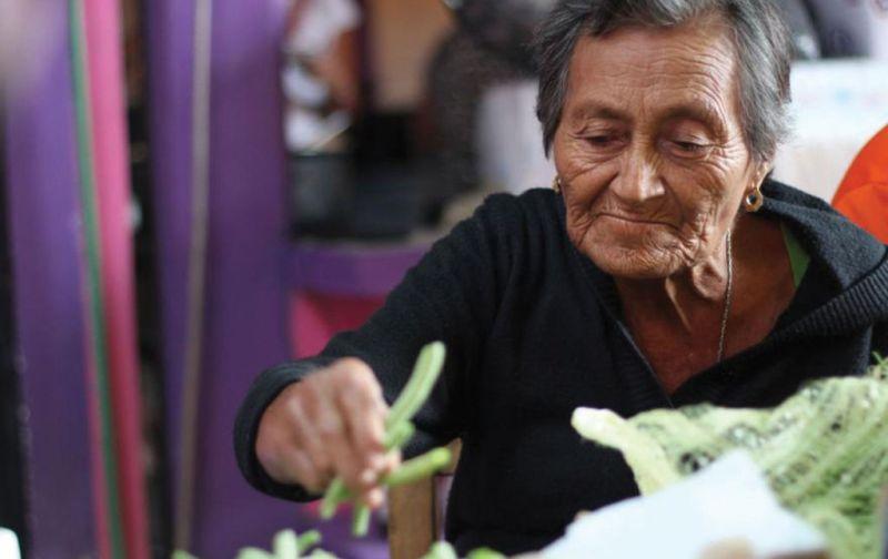Norma Romero. Las Patronas - las-patronas-foto5
