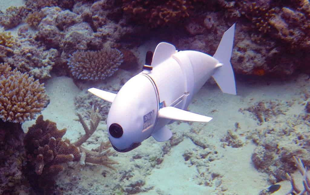 HotGadgets - pez robot