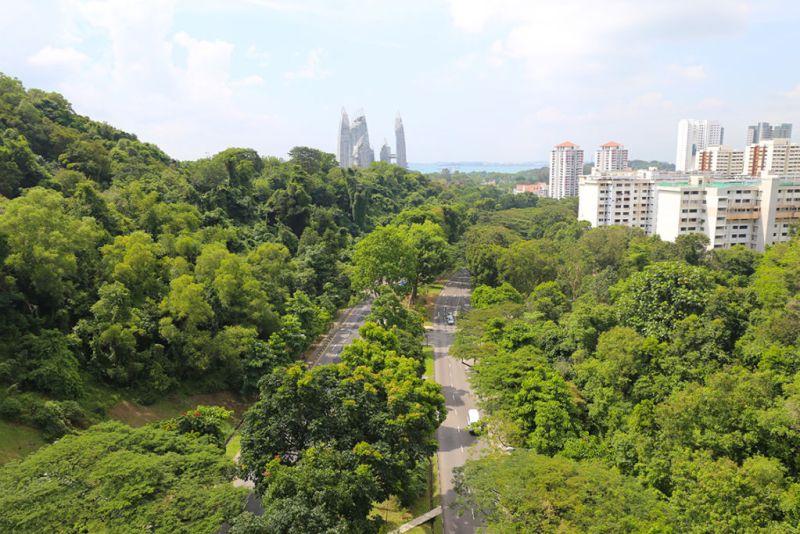 Singapur: un destino único en Asia - marianamanina-vista-desde-henderson-waves-copia