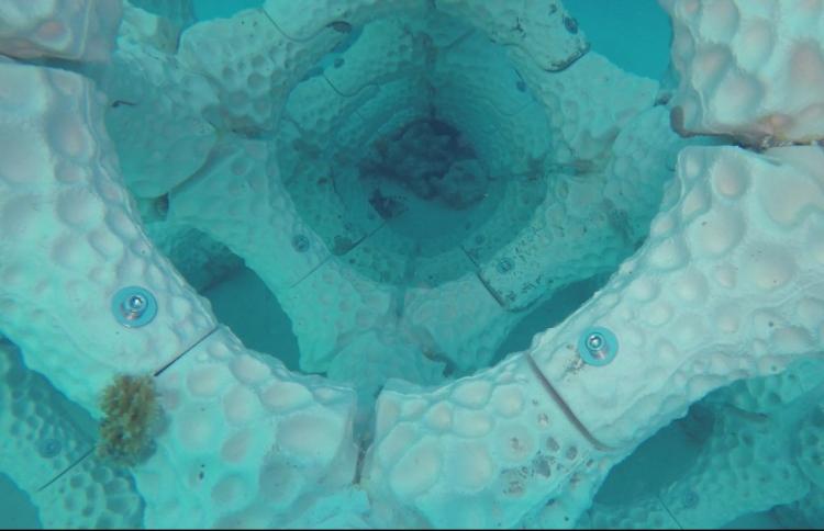 La nueva propuesta en 3D para salvar los arrecifes de coral - 3dreef_estructura