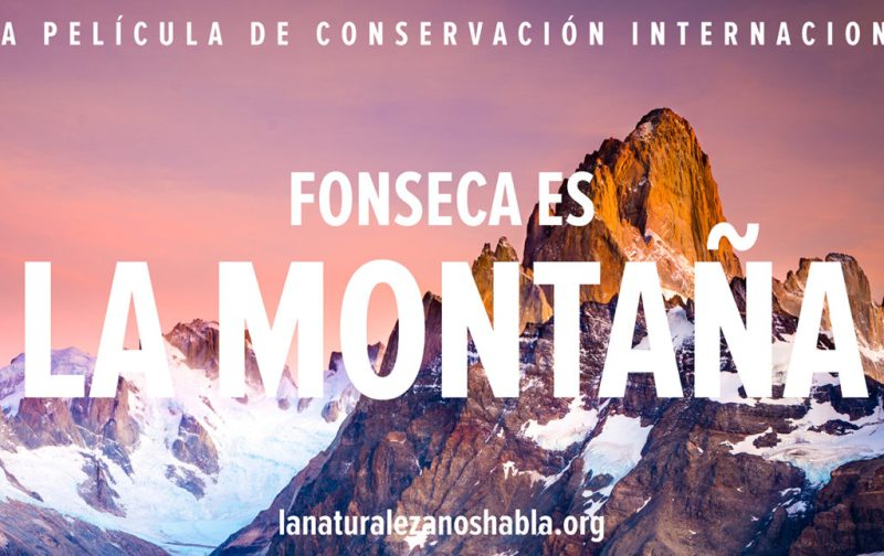 Conservation International, a favor de la naturaleza - montancc83a-pelicula-natural-conservacion