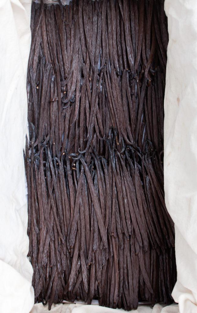 HOTabc: ingredientes de temporada - vainilla-foto-comida