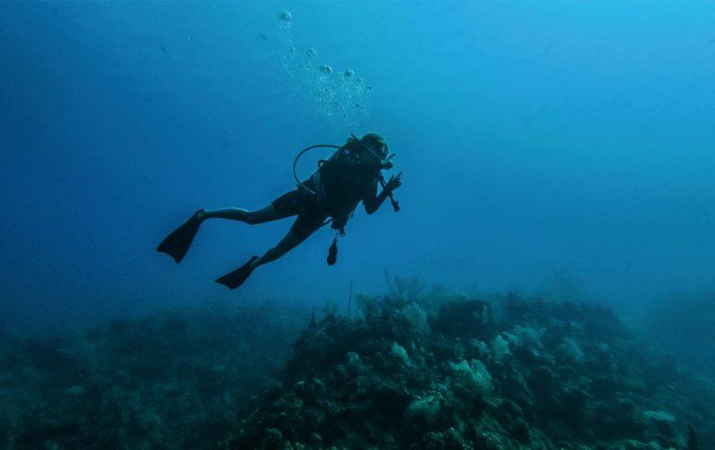Las Islas Caimán, un archipiélago en el corazón del Caribe - mar-vacaciones-buzo