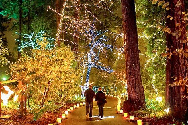 7 increíbles festivales de Navidad en el mundo - festivalesnavidad_thegrottochristmasfestivaloflights