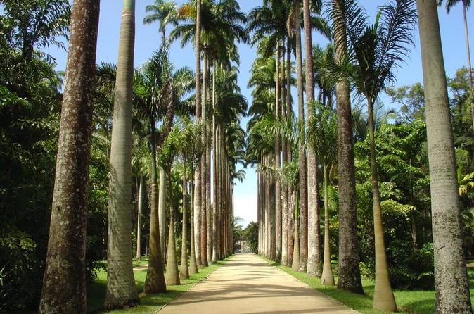 Los jardines botánicos más bonitos del mundo - jardim-botacc82nico-rio-de-janeiro