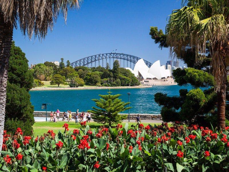 Los jardines botánicos más bonitos del mundo - royal-botanic-gardens-sidney