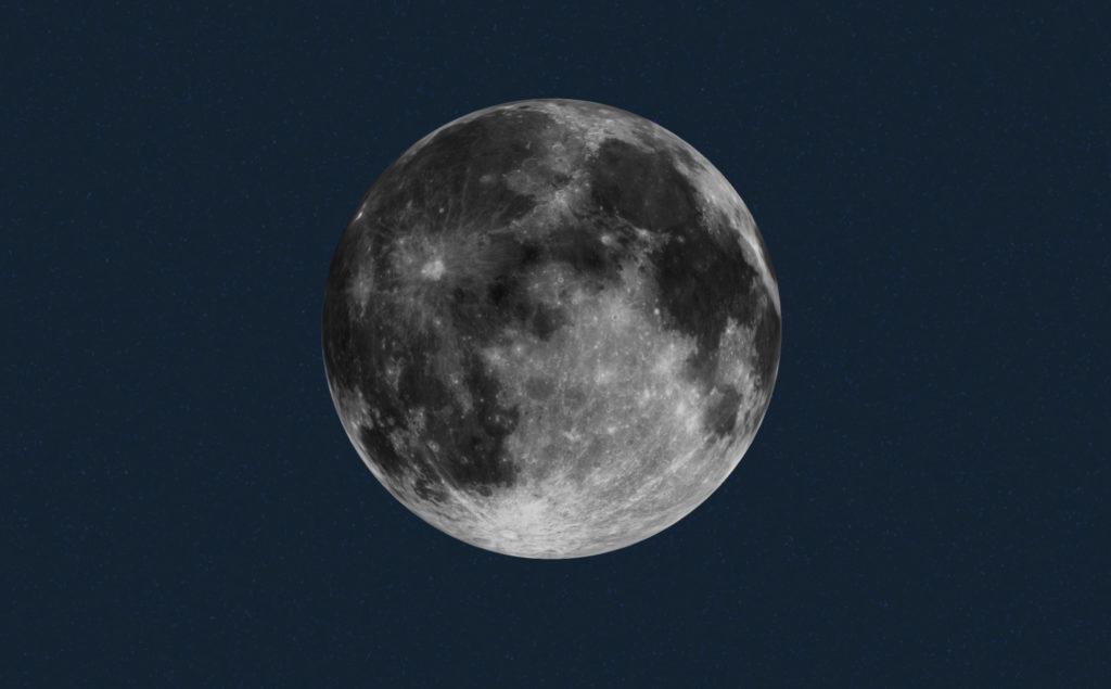 Brota la primera planta en la superficie lunar - Planta de algodón en la Luna SGA