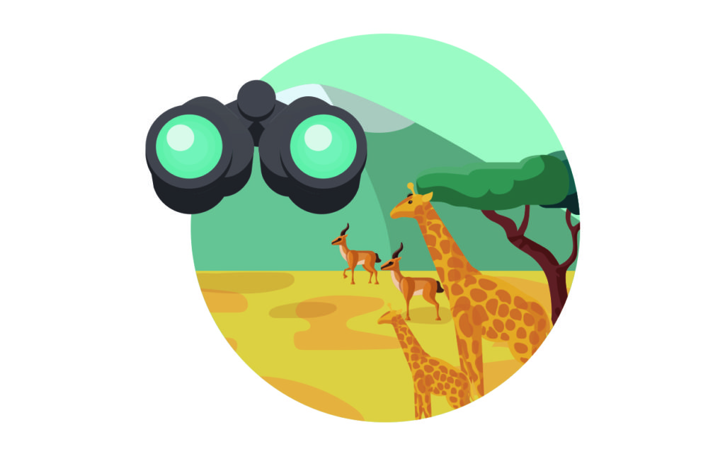 Tips para ir a un safari en África - TIP-9