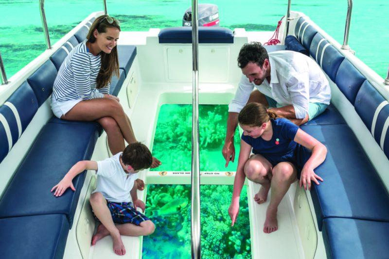 Reef Care, el plan de recuperación de corales heridos - 80fc001h