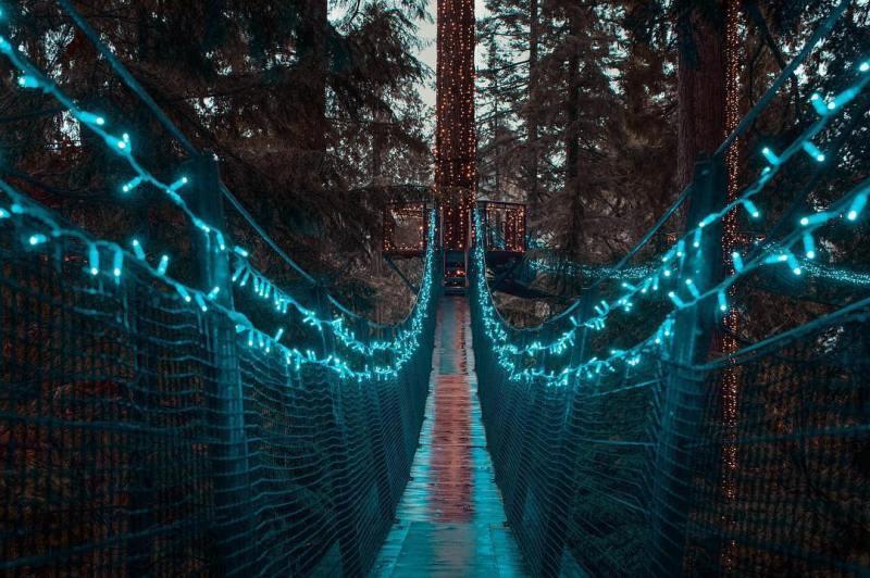 Guía para visitar Vancouver - hotbook-guia-para-visitar-vancouver_capilano-suspension-bridge-jpg
