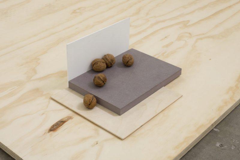 La segunda exposición de Julius Heinemann en la galería Proyectos Monclova - 9