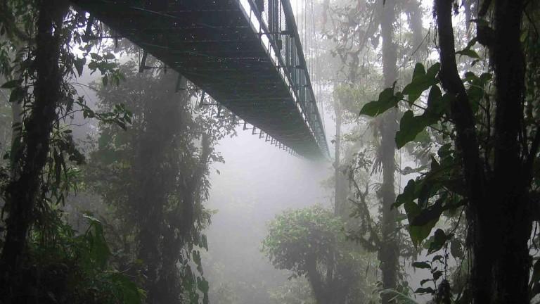 Los mejores destinos del mundo para Semana Santa - hotbook-los-mejores-destinos-del-mundo-para-esta-semana-santa-monteverde