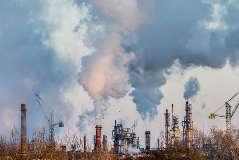 La importancia de la reforestación en nuestra era - contaminacion