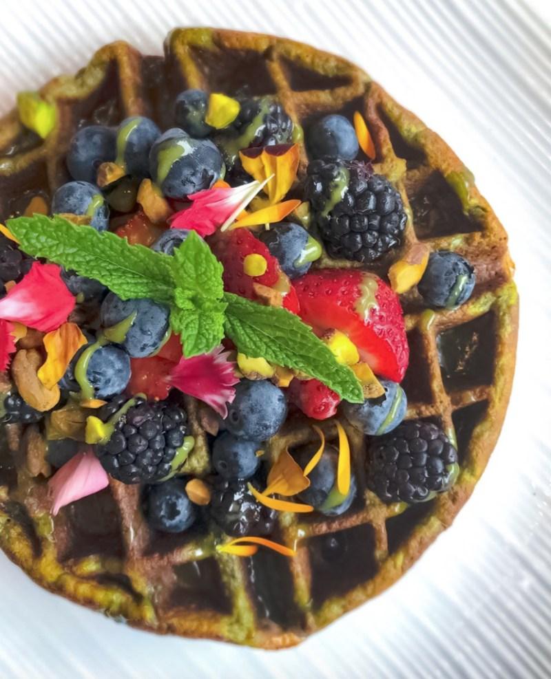 Los lugares más cool para desayunar en San Diego - desayunossandiego_parakeet