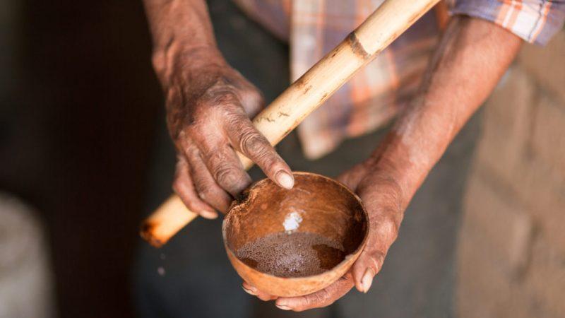 Mezcal Montelobos, tradición y sustentabilidad - hotbook-mezcal-montelobos-tradicion-y-sustentabilidad-1