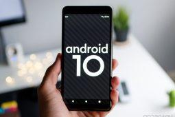 Android 10: el nombre oficial del más reciente sistema operativo de Google - android 10 portada