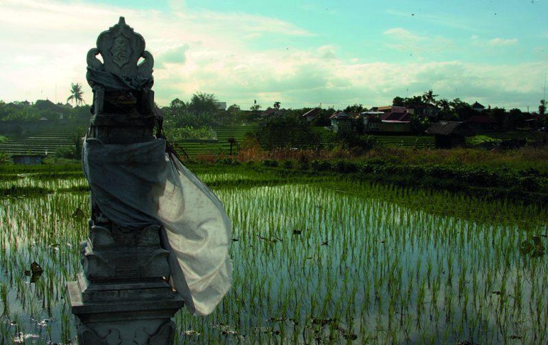 Bali, conocida también, y no por nada, como la isla de los dioses. - bali-1
