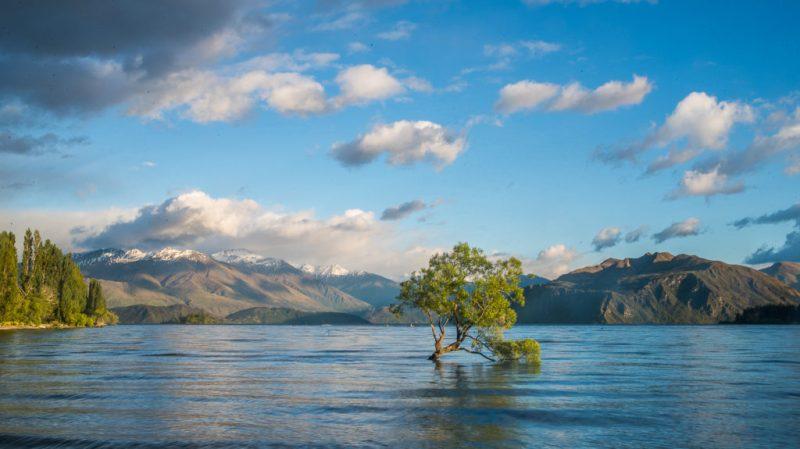 6 lugares esenciales para hacer un road trip por Nueva Zelanda - wanaka-lake-roadtrip