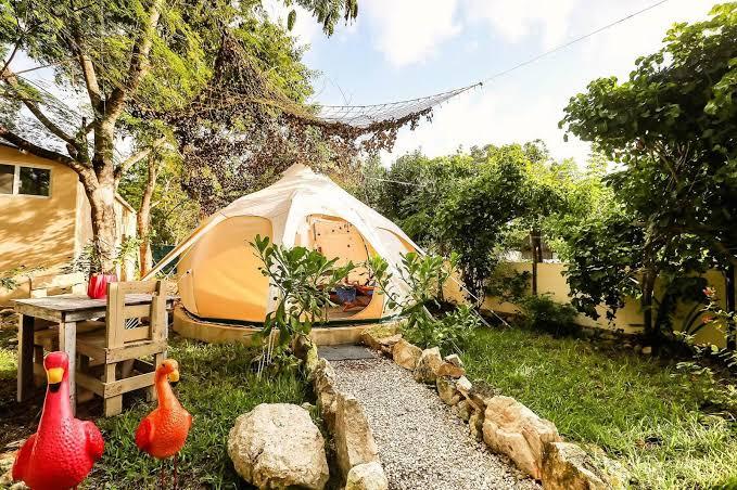 5 lugares para hacer glamping en México - camping-harmony