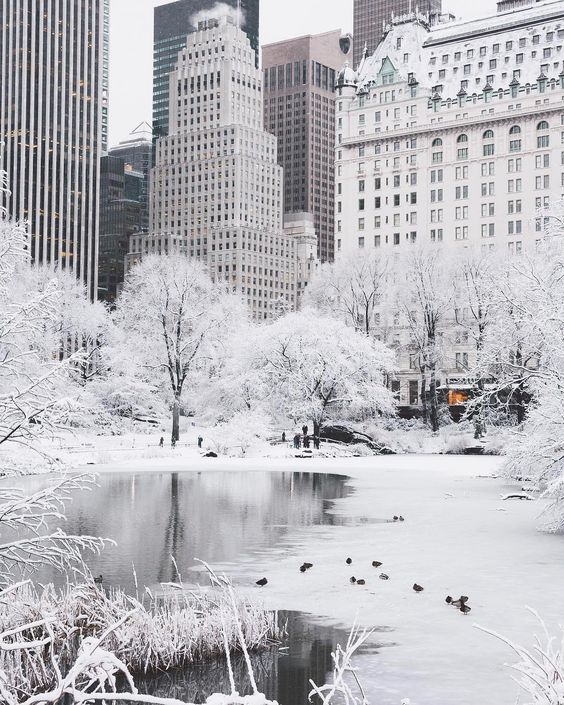 Los siete destinos más lujosos del mundo - nueva-york