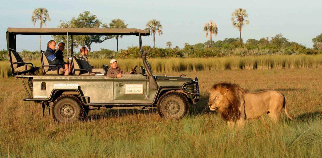 Botswana, un mágico destino africano - Portada bostwana un magico destino africano