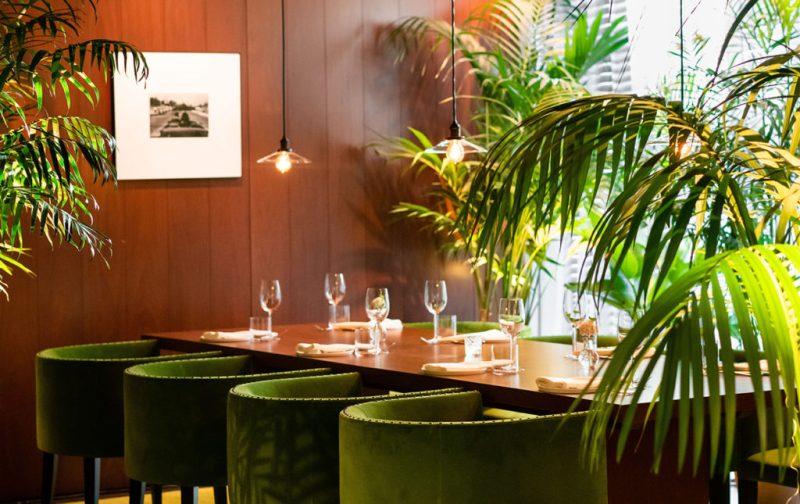 The West Hollywood Edition, un hotel fuera de serie - hotbook_thewesthollywood-comedor-copas-verde-palmeras