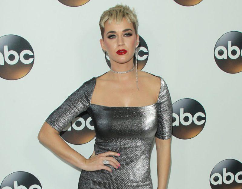 Fun facts de Katy Perry, quien tuvo a su primer bebé: Daisy Dove Bloom - curiosidades-de-katy-perry-la-celebridad-que-recientemente-tuvo-a-su-primera-bebe-daisy-dove-bloom-katy-perry-gigi-hadid-embarazo-nueva-madre-google-online-instagram-tiktok-zoom-google-meet-cla-7