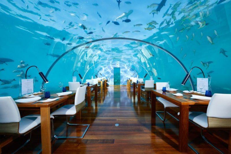 Diseños arquitectónicos bajo el agua que no puedes dejar de conocer - disencc83os-arquitectonicos-bajo-el-agua-que-no-puedes-dejar-de-conocer-google-amazon-instagram-tiktok-submarinas-arquitectura-submarina-maldivas-dubai-fiji-florida-mexico-cdmx-1